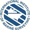 IIMS Logo 100 x 100
